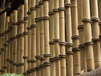 Bamboo fence poles