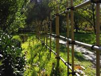 Decorative bamboo fencing design in Yotsume-gaki Style