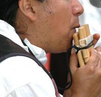 Bamboo Flute - Pan Flute