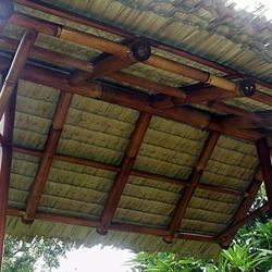 Bamboo roof construction