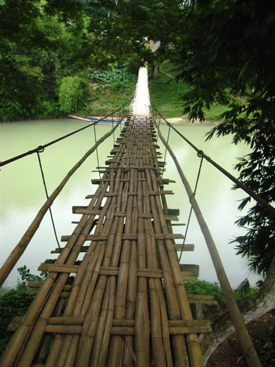 Bamboo bridge construction