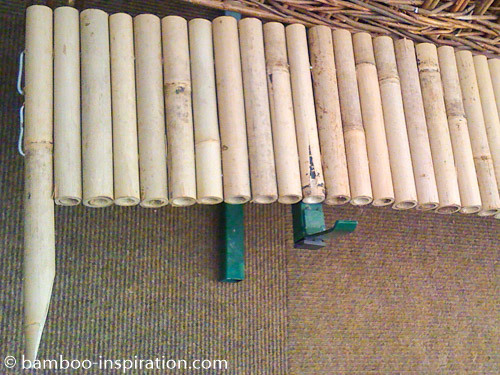 Bamboo Edging Large Diameter Poles with End Stakes
