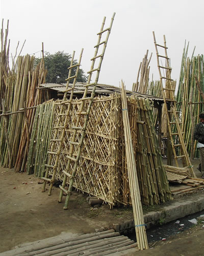 Bamboo Suppliers